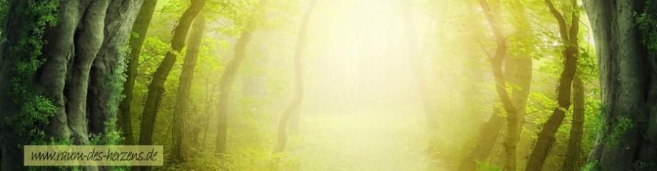 Raum des Herzens - Yogaschule, Yoga Kurse und Ayurveda Massage im Raum Aßling, Grafing, Kirchseeon, Eglharting, Moosach, Zorneding, Vaterstetten, Ebersberg, Steinhöring, Pfaffing, Edling, Glonn, Tuntenhausen, Ostermünchen, Rosenheim, Rott am Inn, Wasserburg und München